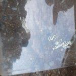 toyota Cressida left rear quarter glass - USED(GPO)