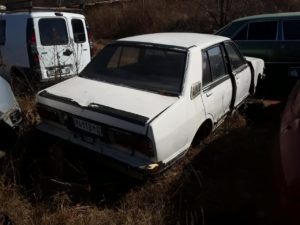Datsun stanza stripping for parts (Yard 2)